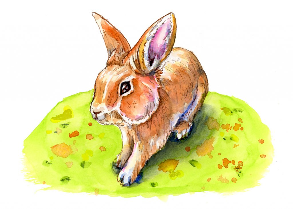 Easter Bunny Day Spring Watercolor Illustration