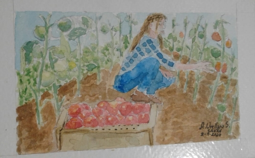 Dia 2. Farm – #doodlewashMarch2020 Desafío: @doodlewashed Obra: Mi Huerto Artista: @sanan_art