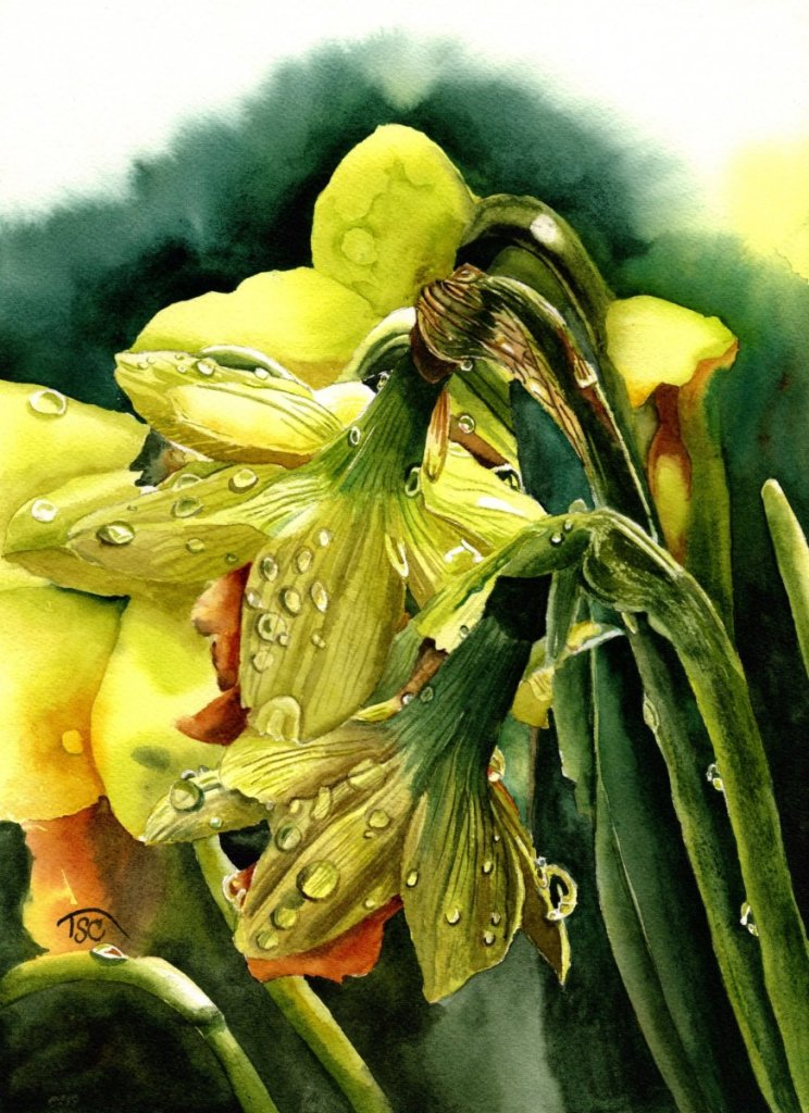 Sold. Raindrops on Daffodils 15