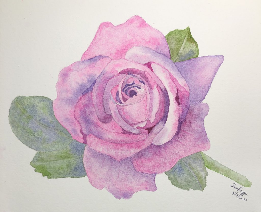 I am a newbie in watercolor painting. I have enrolled in several online classes. I have completed th