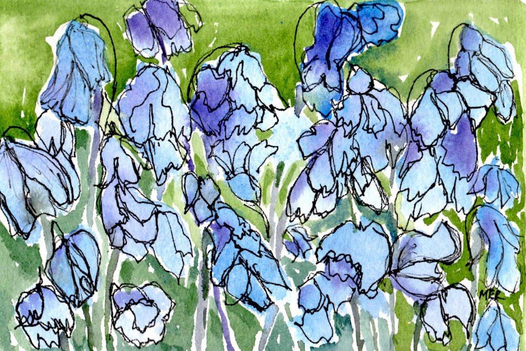 5/25/20 Bluebells 5.25.20 Bluebell img047