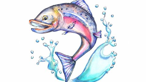Salmon Jumping Leaping Upstream Watercolor Illustration
