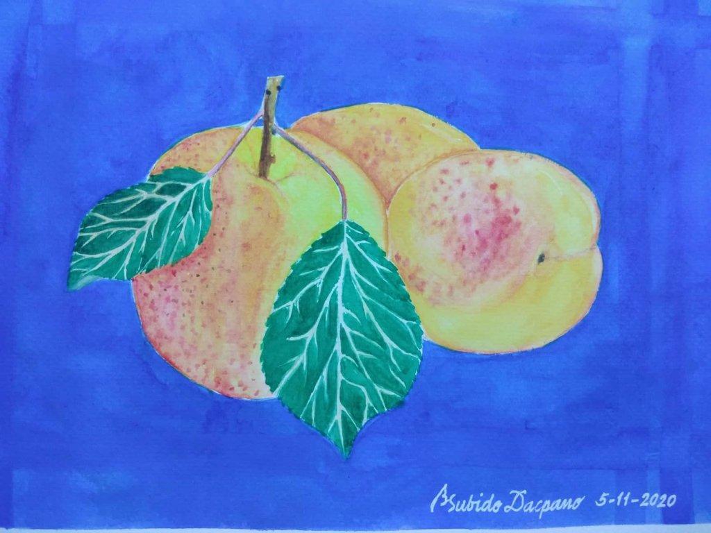 Apricot #doodlewashMay2020 #WorldWatercolorGroup apricot