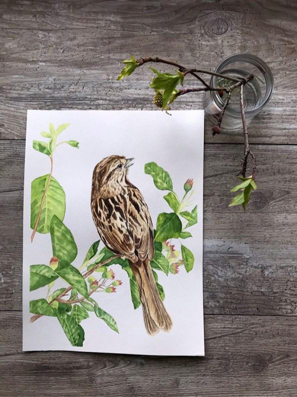 Bird On Tree Watercolor Painting Nicoline Mann