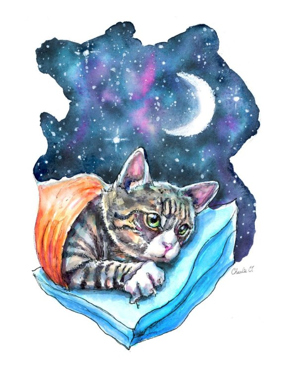 Tabby Cat Moon Galaxy Sleeping Watercolor Print Detail Image