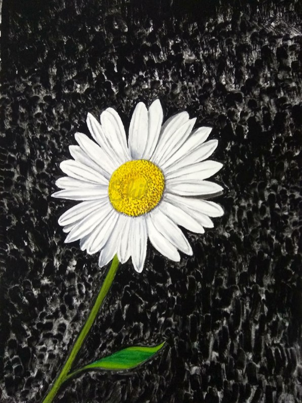 Daisy Flower Watercolor by Shilpi Gupta