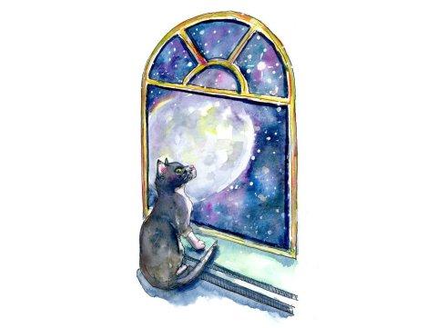 Cat Moon Window Stars Galaxy Watercolor Painting Illustration