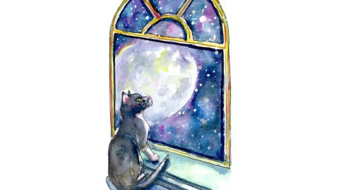Cat Moon Window Stars Galaxy Watercolor Painting Illustration