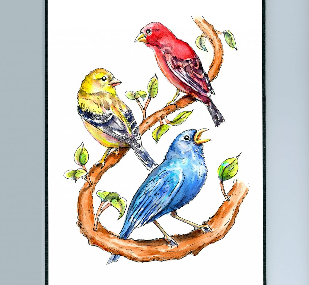 Finches Primary Colors Watercolor Painting Illustration Sketchbook Detail