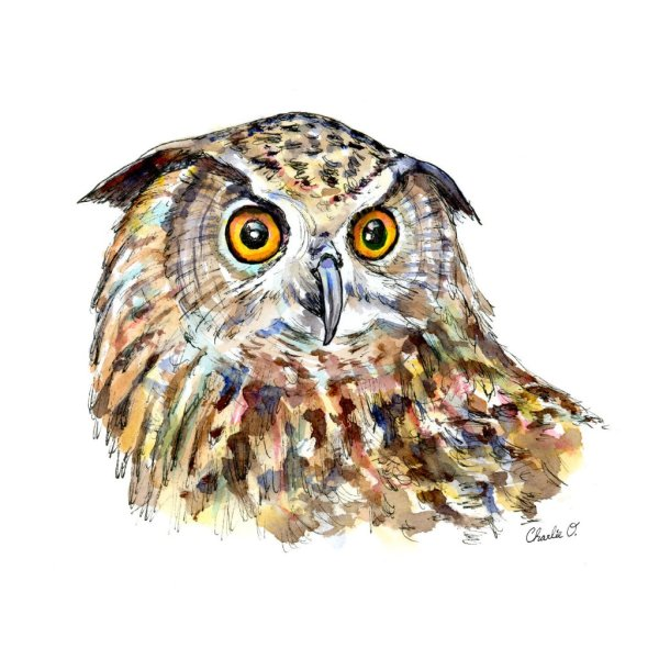 Owl-Eyes-Watercolor-Painting-Illustration-Signed_Detail