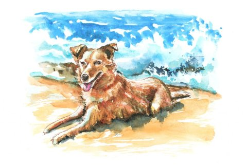 Dog On The Beach Watercolor Palette Illustration