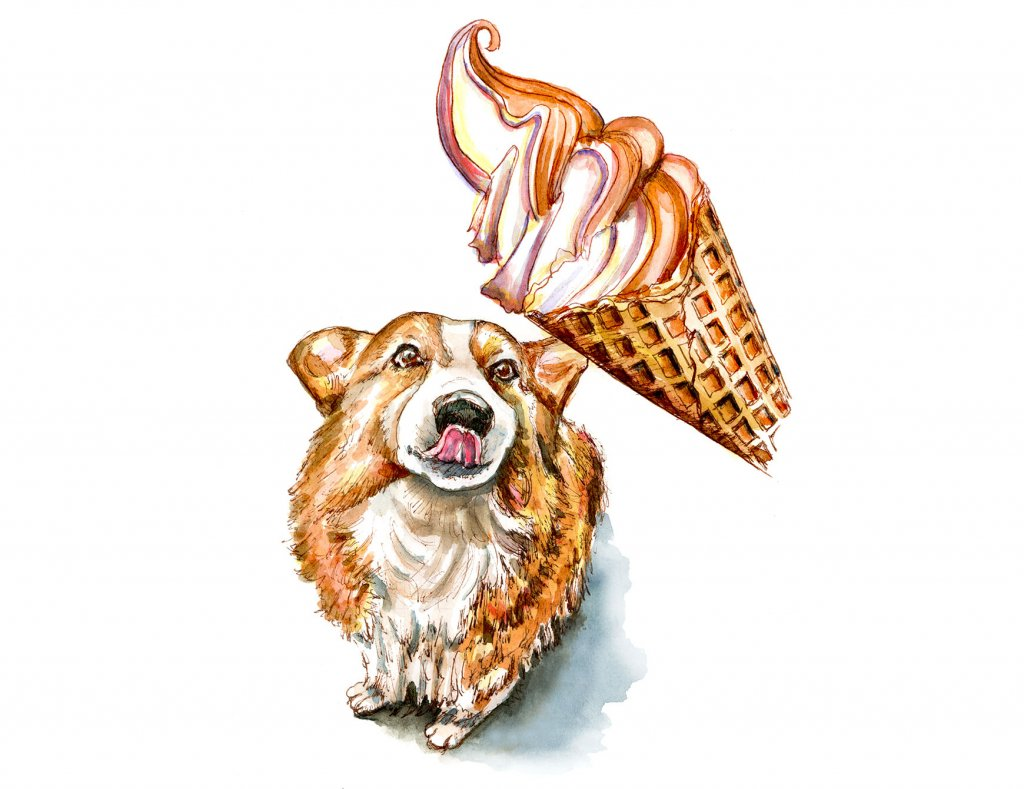 Dog Eating Ice Cream Cone Corgi Watercolor Painting Illustration