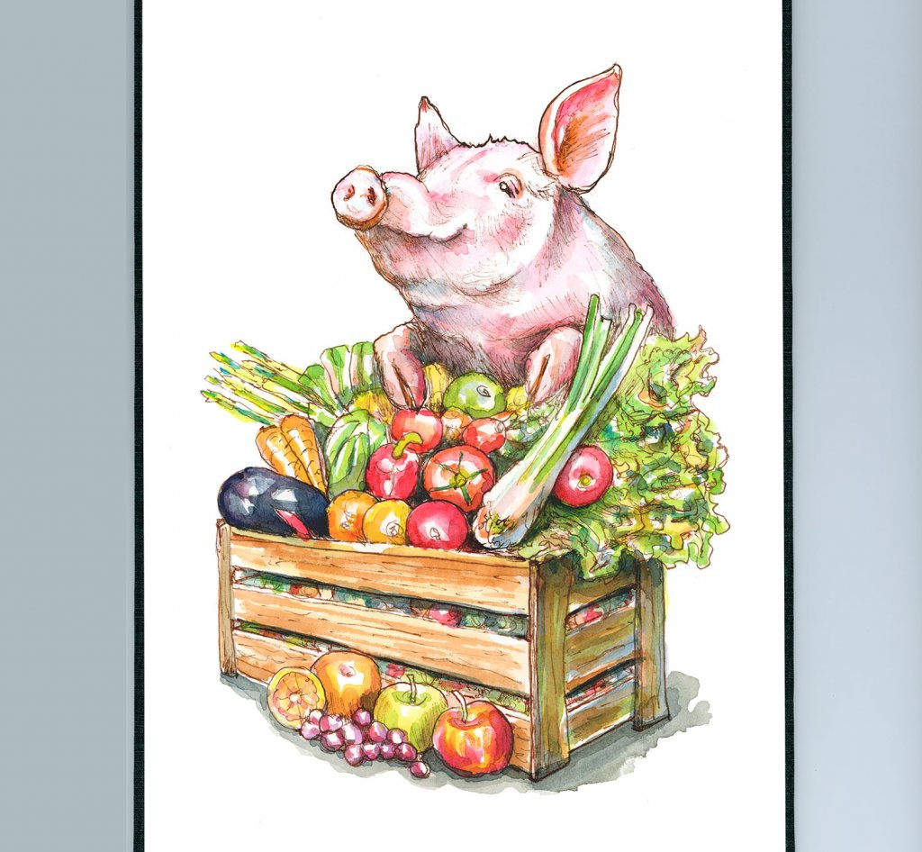 Pig Vegetables Crate Abundance Watercolor Painting Illustration Sketchbook Detail