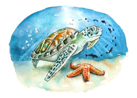 Sea Turtle Underwater Starfish Fish Watercolor Illustration Painting