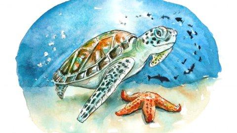 Sea Turtle Underwater Starfish Fish Watercolor Illustration Painting