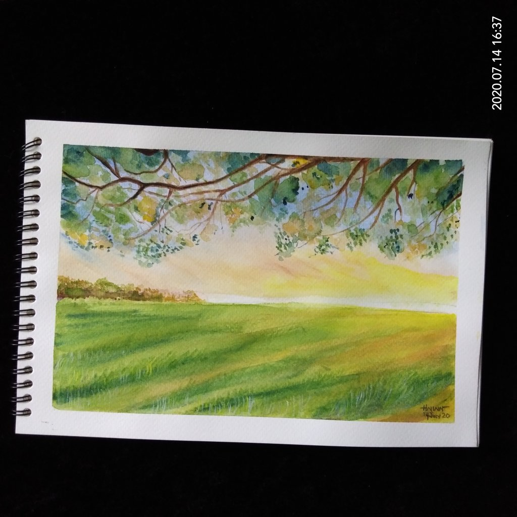 #doodlewashJuly2020 #worldwatercolormonth2020 #Beginner #14 #Green #14July2020 Today prompt is green