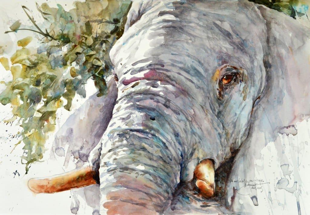 2015 A wrinkle in time 21x14 elephant face watercolour by Bev Jozwiak