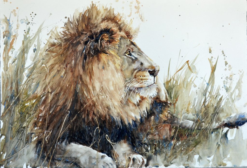 2019 15x22 It's good to be King lion watercolor by Bev Jozwiak
