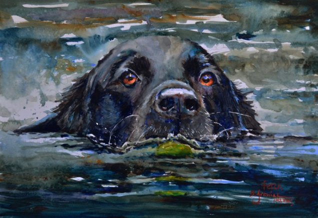 2019 Fetch 16x11 dog in water watercolor by Bev Jozwiak