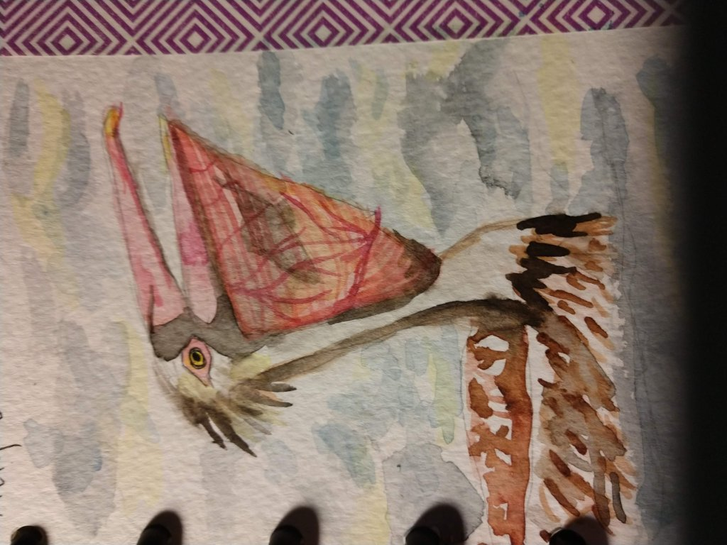Aug.8 Pelican I found an awesome photo on pintrest that I used for my sketch. Yup, There is a fish i