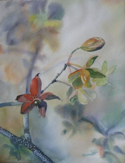 Branch Watercolor painting by Gail Juszczak