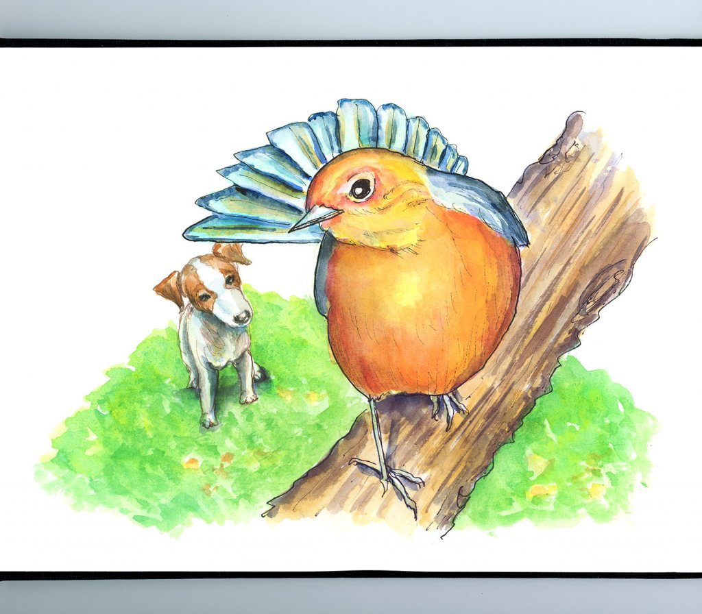 Bird From Above In Tree Looking Down At Dog Jack Russell Watercolor Painting Illustration Sketchbook Detail