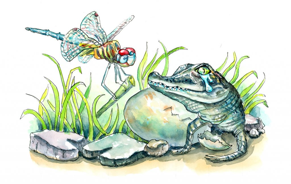 Crocodile Tears Baby Alligator Dragonfly Watercolor Painting Illustration
