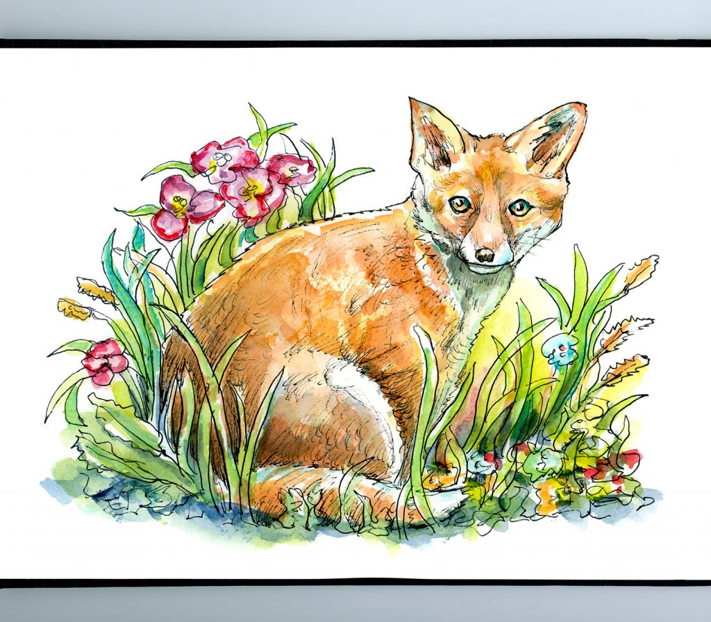 Fox Red In Grass Flowers Watercolor Painting Illustration Sketchbook Detail