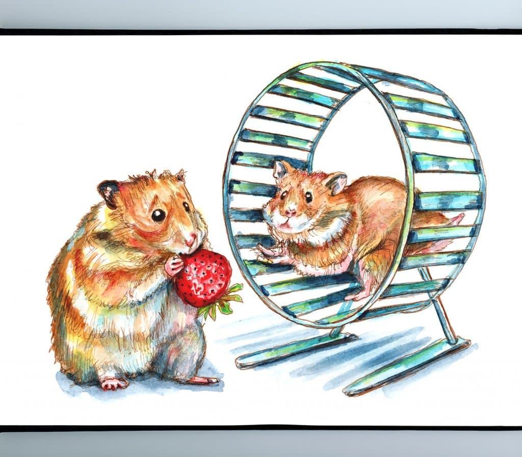 Hamster Wheel Fat Hamster Eating Skinny Hamster Running Watercolor Painting Illustration Sketchbook Detail