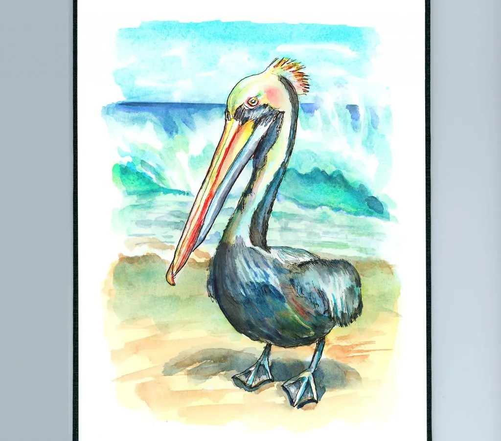 Peruvian Pelican On Beach Watercolor Painting Illustration Sketchbook Detail