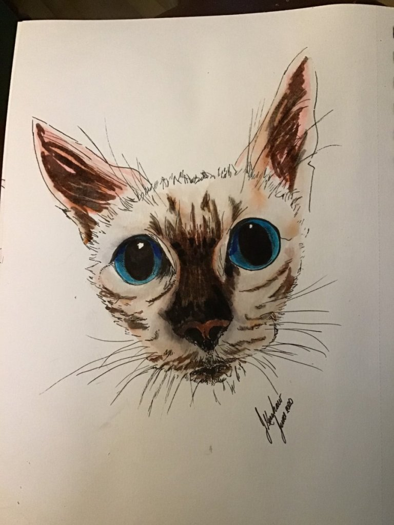 Watercolour and ink. Little cat. D2F0416C-4870-4C9F-9563-A6B80D2C7180