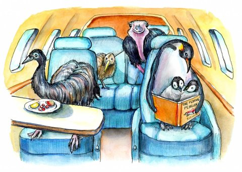 Flightless Birds Emu Ostrich Emperor Penguin Kiwi On Airplane Jet Watercolor Painting Illustration