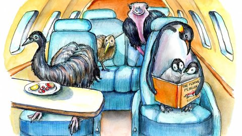 Flightless Birds Emu Ostrich Emperor Penguin Kiwi On Airplane Jet Watercolor Painting Illustration