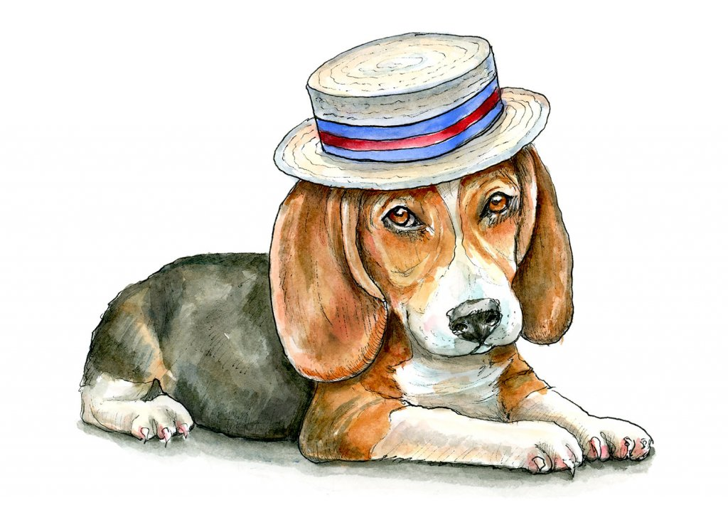 Beagle Puppy Wearing A Boater Watercolor Painting Illustration
