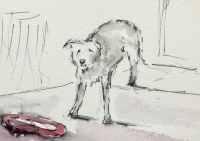 William-the-lurcher #sketchingwilliam
