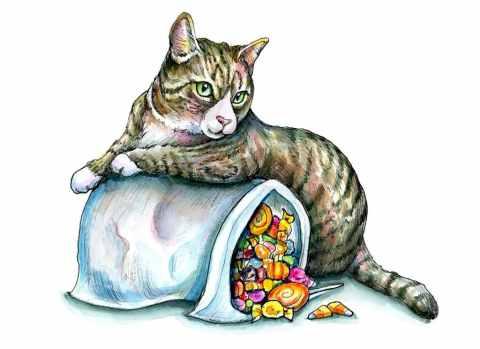 Halloween Candy Pillowcase Bag Kitten Cat Watercolor Illustration Painting
