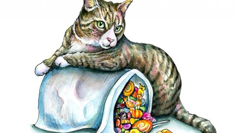 Halloween Candy Pillowcase Bag Kitten Cat Watercolor Illustration Painting