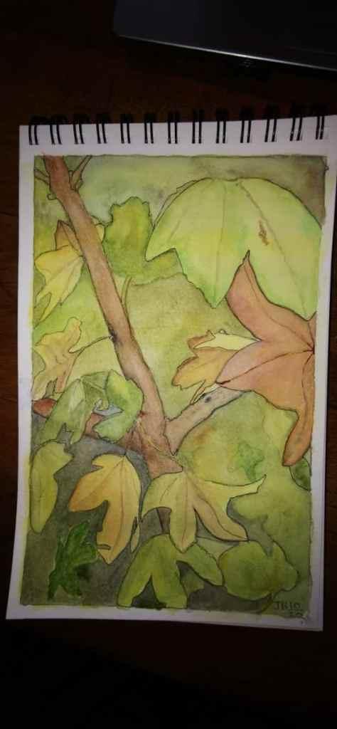 Autumn Leaves. IMG_20201012_170222