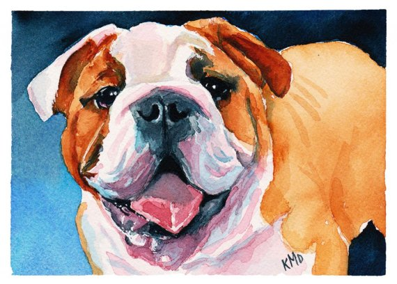 Bulldog Dog Pet Portrait studio Watercolor