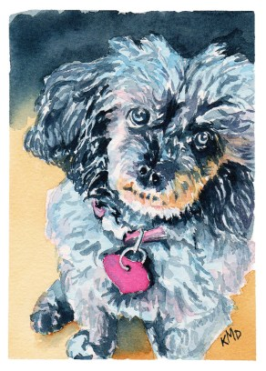 Poodle studio Dog Pet Portrait Watercolor