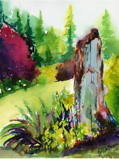 Old Cedar Stump studio watercolor