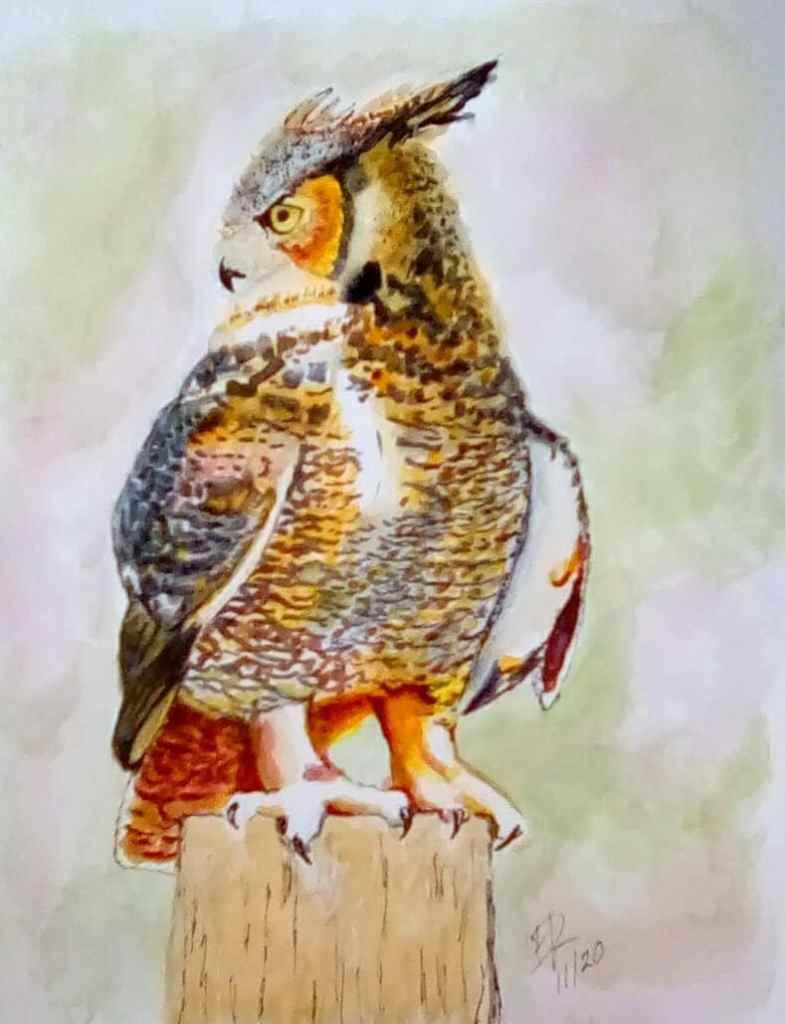 """Watercolor challenge """"Owl"""" IMG_20201121_131533_kindlephoto-324489280"""