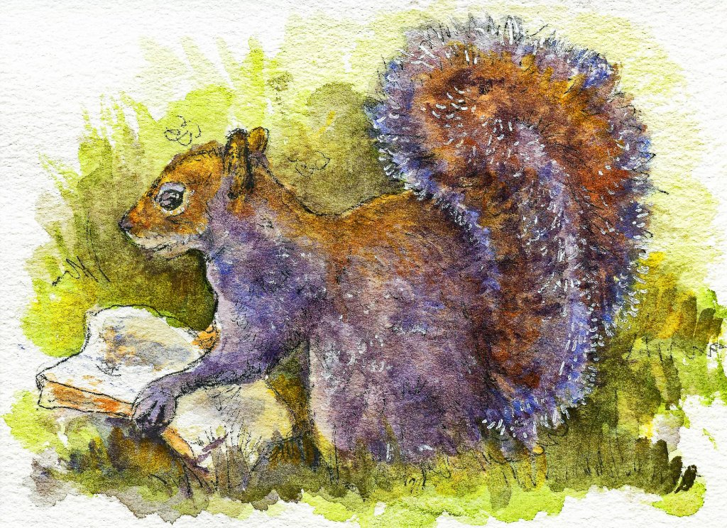 Working for the Daily Bread. Did you know that squirrels have double-jointed hind legs? So you might