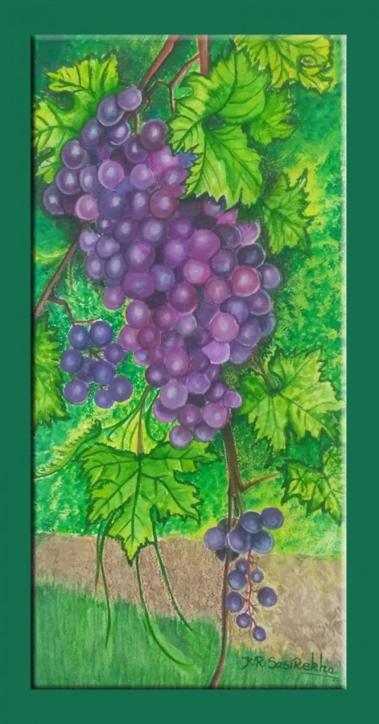 My favorite fruit is grapes. Because with grapes, you always get another chance. 'Cause, you k