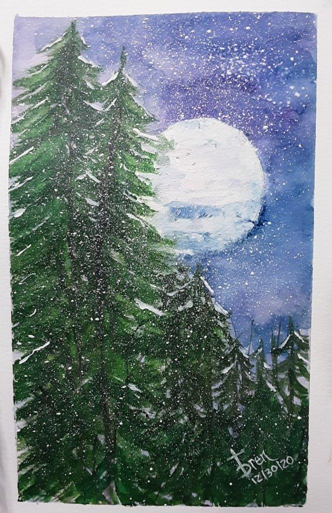 Snowy Night Sky 20201230_093640