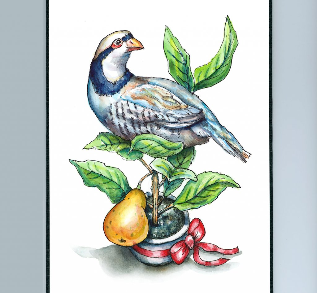 Partridge In A Pear Tree Watercolor Illustration Painting Sketchbook Detail