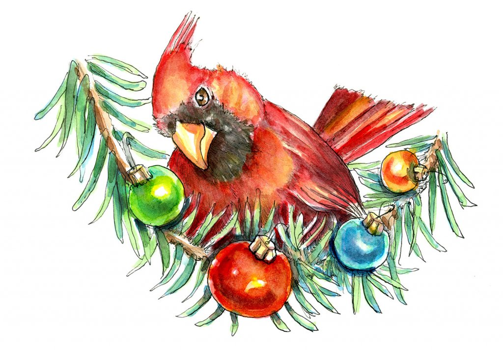 Cardinal Red Bird Ornaments Christmas Watercolor Illustration Painting