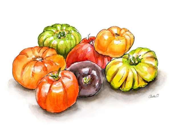Heirloom Tomatoes Watercolor Print Detail copy