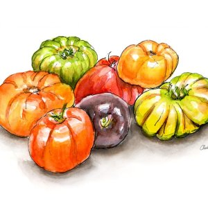 Heirloom Tomatoes Watercolor Print Detail copy