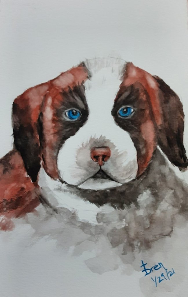 I love St. Bernards but living in Texas, it would be cruel to subject such a dog to the Texas heat.
